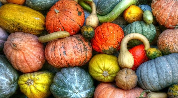 dinner-in-a-dash-pumpkin-hypoxi-main-blog